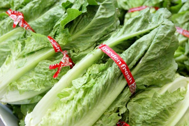 Romaine lettuce E. coli outbreak now includes Florida